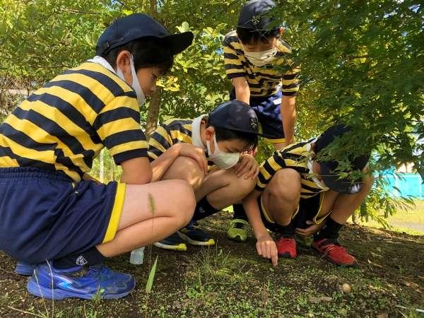 自然豊かな小学校での休み時間